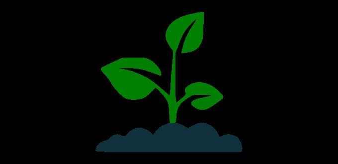 NDVI i índexs de vegetació