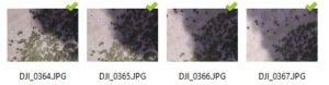 mapa drone forestal