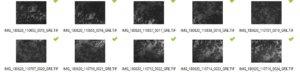 mapa drone forestal multiespectral